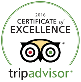 2016 Certificate of Excellence Winner